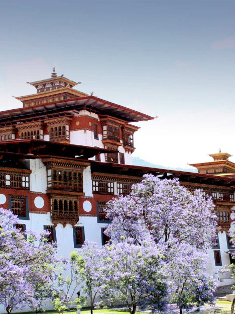 Bhutan Mystic tours
